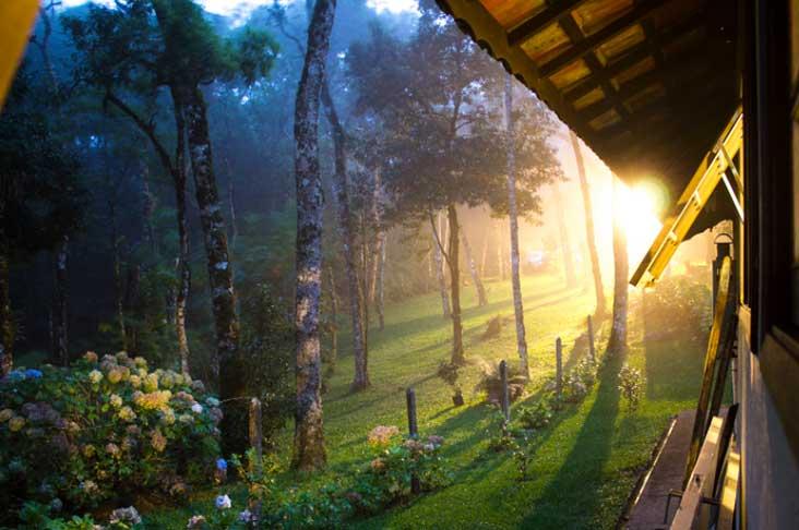 monte-verde Destinos para viajar a dois no Brasil