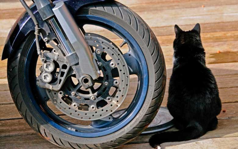 viajar-de-moto2 Viagem de moto: cuidados antes de pegar a estrada