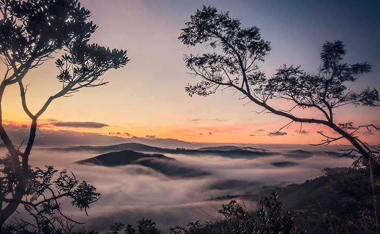Serra-da-Moeda Inhotim: um lugar indescritível