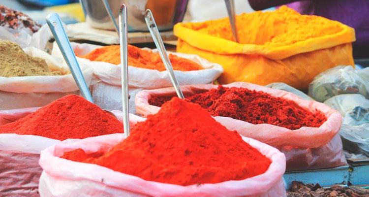 indiaguia Guia de Viagem: o fazer, comer e onde ir na Índia