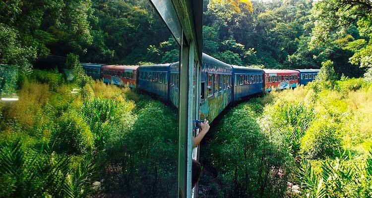 morretess Passeio de trem para Morretes: uma viagem imperdível saindo de Curitiba