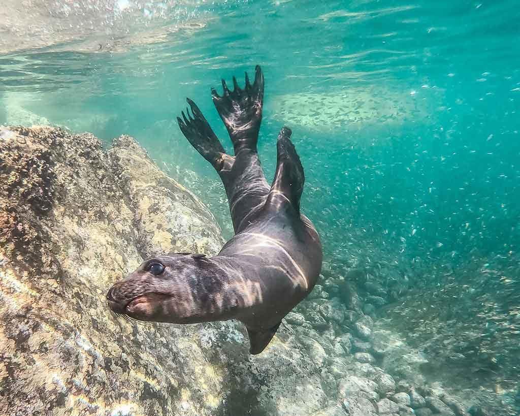 Isla-Mujeres-mexico-1024x819 Melhores praias do México: conheças as praias mais bonitas e paradisíacas para se divertir