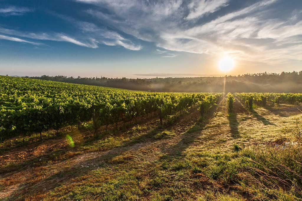 Toscana-Região-1024x683 Roteiro Europa 20 dias: 2 roteiros de viagem completos para sua Eurotrip