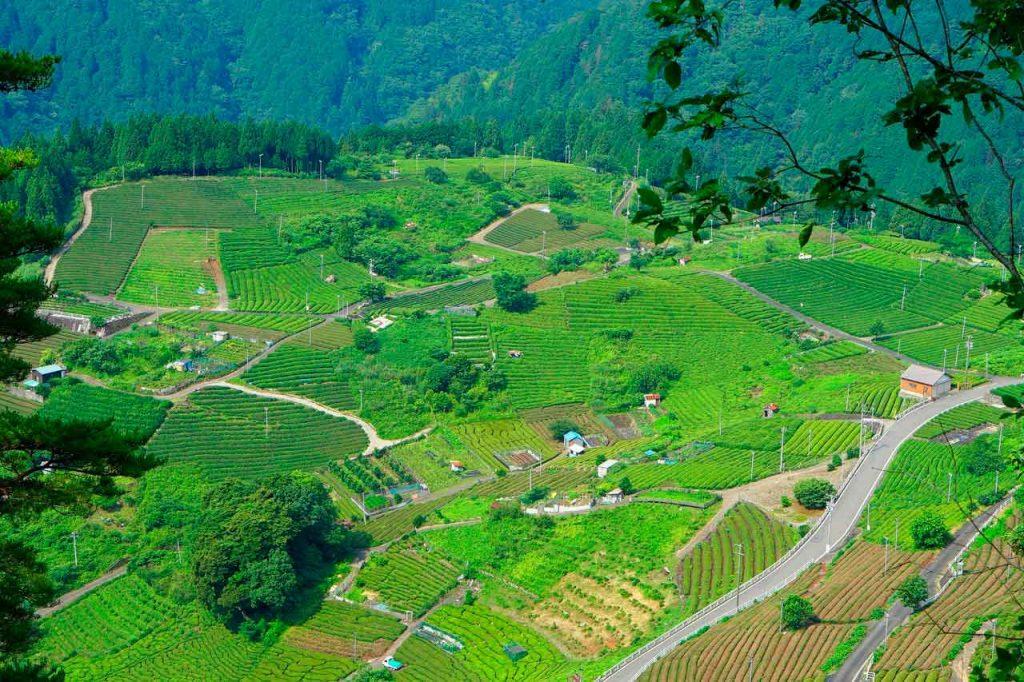 Area-Agricola-1024x682 Viagem para Machu Picchu: dicas, o que fazer e quando ir [GUIA]