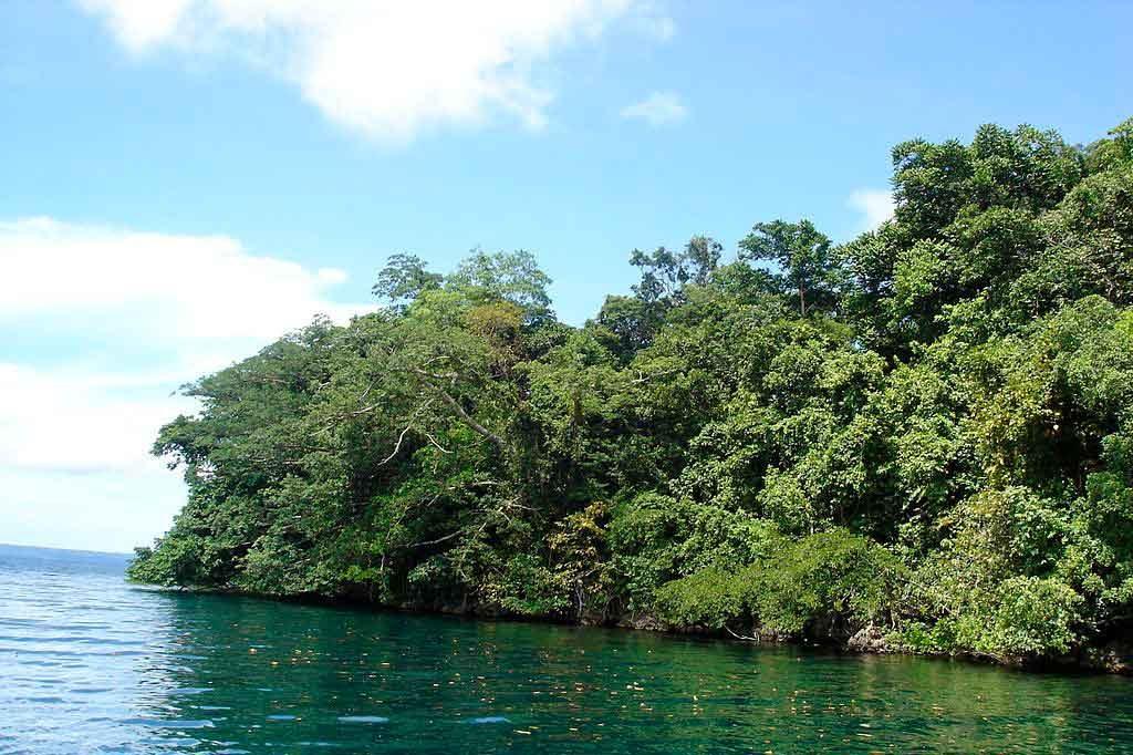leste-de-Rennell-1024x682 Conheça os encantos das Ilhas Salomão